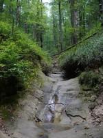 Ручей в районе скал Довбуша
